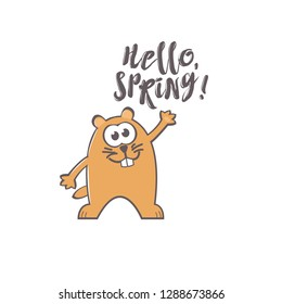 Groundhog Day greeting card with cute smiling marmot and handwritten text on white background. Inscription - Hello, spring