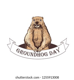 Groundhog Day. Groundhog  on the background of the burrow and a ribbon banner with the inscription. Holiday illustration. Engraved style elements . Vintage color sketch.