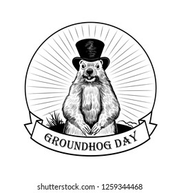 Groundhog Day. Groundhog on the background of the rays and a ribbon banner with the inscription. Vector illustration. Engraved style elements . Vintage  sketch. Emblem.
