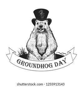 Groundhog Day. Groundhog weatherman in hat on the background of the burrow and a ribbon banner with the inscription. Holiday illustration. Engraved style elements . Vintage color sketch.