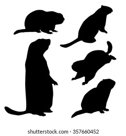 groundhog silhouette