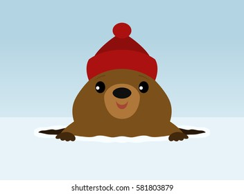 Groundhog wearing a winter hat