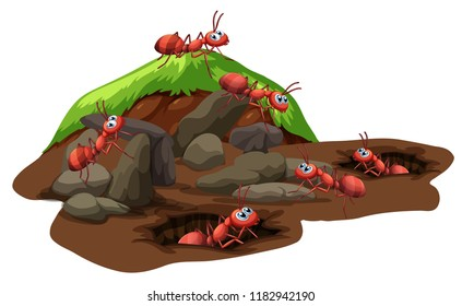 Group of ants living underground illustration