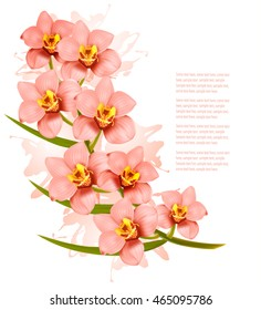 Group of beautiful pink orchid flowers. Vector.