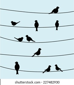 Group of birds on wires. Black color silhouette bird design, simple vector art image illustration on sky blue background. animal concept wallpaper, vintage style