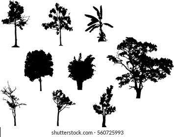 A group of black tree silhouettes in summer season, Isolate tropical black tree vector on white background