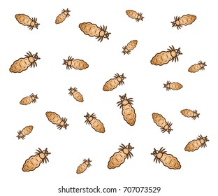 Group of cartoon vector lice.