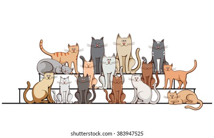 group of cats on the steps