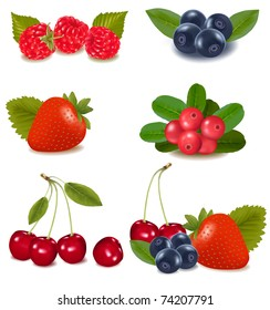 Group of cranberries, blueberries, cherries,  raspberries wild strawberries with plant leaves. Photo-realistic vector illustration.