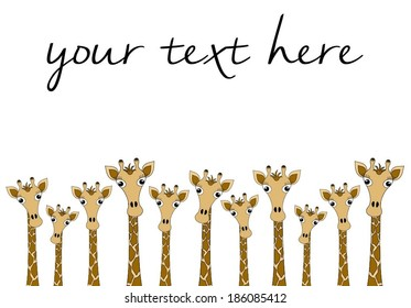 Group of different sizes cute giraffes peeking.you can see only the head and neck. cartoon drawing graphic design, vector art image illustration. isolated on white background, your text here wallpaper