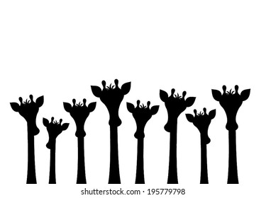 Group of different sizes cute giraffes peeking. you can see only the head and neck of giraffe. cartoon drawing graphic design, vector art illustration. black silhouette isolated on white background,