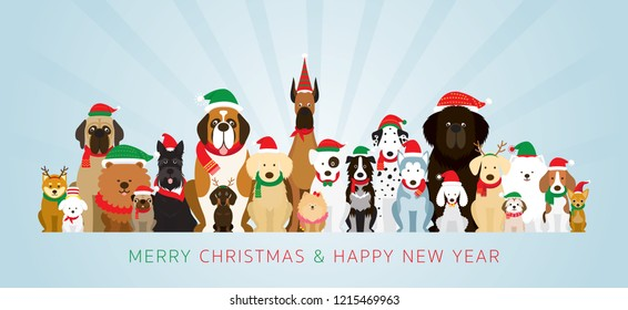 Group of Dogs Wearing Christmas Costume, Winter and New Year Celebration