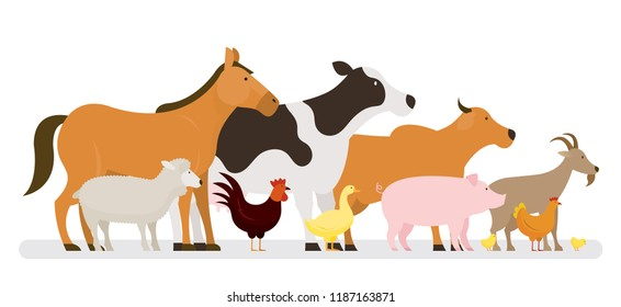 Group of Farm Animals, Side View, Farming, Farmland, Agriculture Product