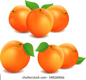 Group of fresh apricots