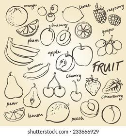 Group of fresh fruit doodle vector set