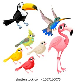 Group of funny tropical birds. Vector cartoon isolated characters