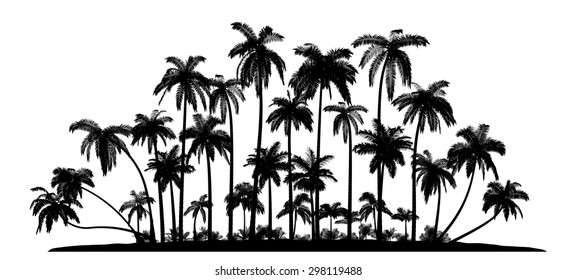 A group of high Quality Vector silhouettes of tropical beach palms.