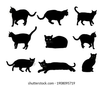Group of many black cats vector silhouette illustration isolated on white background. Cat family. Lovely friendly pets.