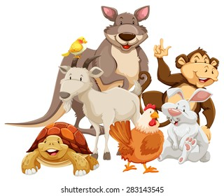 Group of mix wild animals smiling