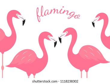 Group of pink flamingos isolated on white background. Vector illustration