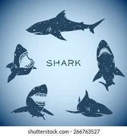 group of sharks concept background. Vector illustration