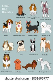 group of small dogs breeds hand drawn