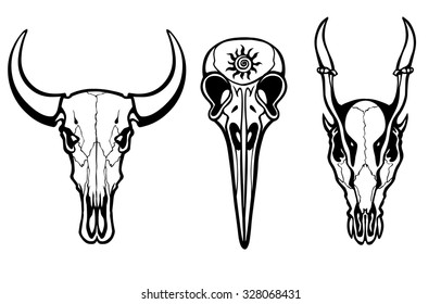Group of the stylized skulls of fantastic animals. Isolated on a transparent background.