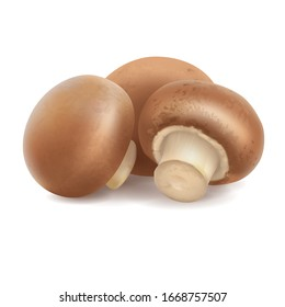 Group of three 3d realistic champignons isolated on white background. Mushroom composition for food label design. Vector cremini illustration. Whole portobello side view