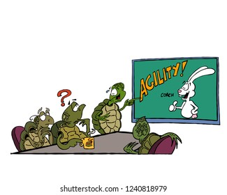 "A group of turtles study the possibility of hiring an ""agility coach"" for their business"