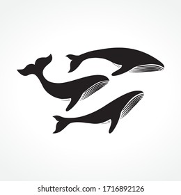 group of whales, vector illustration