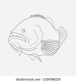 grouper fish icon line element  vector illustration of grouper fish icon  line isolated on clean