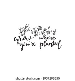 Grow where you're planted. Calligraphic Hand drawn inspirational phrase. Motivational quote. Today is magical.
