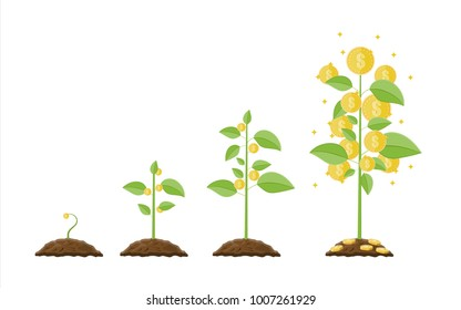 Growing money tree. Stages of growing. Gold coins on branches. Symbol of wealth. Business success. Flat style vector illustration.
