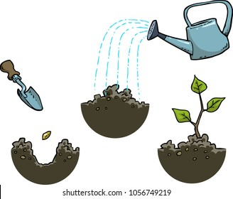 Growing a plant on a white background vector illustration