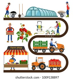 Growing tomatoes. Farming infographic set with farmers, greenhouse, equipment and other objects. Collection of vector illustrations isolated on white