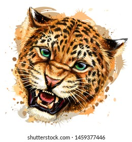 Growling leopard. Color, hand-drawn portrait of a growling leopard on a white background. Watercolor splashes.