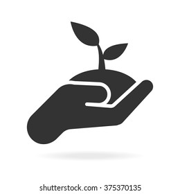 Growth concept. Plant in hand.