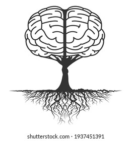 the growth of thought patterns