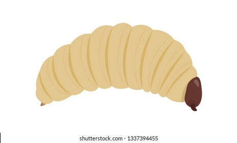 Grub worm cartoon on white background. symbol. wallpaper. free space for text. Grub worm vector.