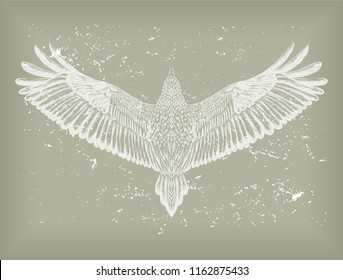 Grunge background with white hand drawn hawk.Flying bird on the grey ground. Engraved owl. Vector isolated illustration. Sketch of tattoo art. Design print for t-shirt. Symbol of freedom.