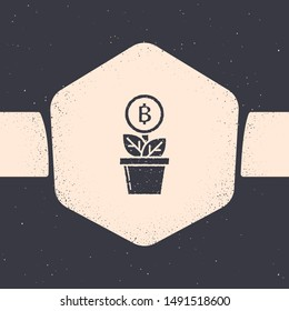 Grunge Bitcoin plant in the pot icon isolated on grey background. Business investment growth. Blockchain technology, cryptocurrency mining. Monochrome vintage drawing. Vector Illustration