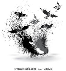 Grunge element of birds and splatter
