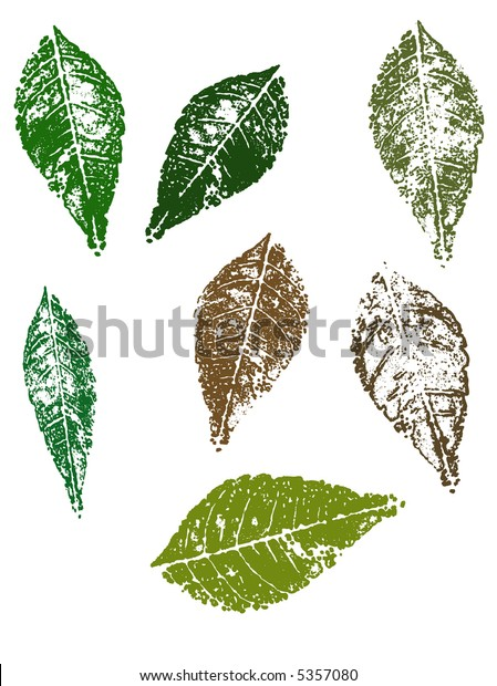 Grunge elements - Autumn Leaves.   Highly Detailed vector grunge elements