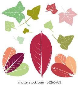 Grunge Leaves