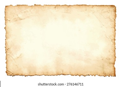 Grunge texture of old paper  isolated on white background. Vector illustration. Image trace.