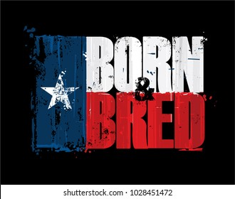 "Grunge Textured Illustration of the phrase ""Born and Bred"" depicted as a Texan Flag. Custom Lettering"