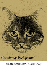 Grunge vintage background with cat theme, vector illustration