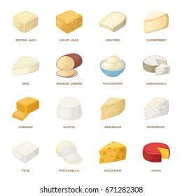 Gruyere, camembert, mascarpone, gorgonzola ?nd other types of cheese. Different kinds of cheeses set collection icons in cartoon style vector symbol stock illustration web.