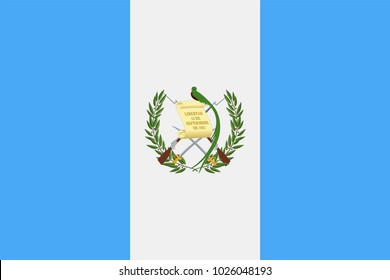Guatemala Flag Vector Icon - Illustration