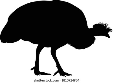 Guinea Guinea Fowl (Numididae) Standing On a Side View Silhouette Found In Map Of Africa